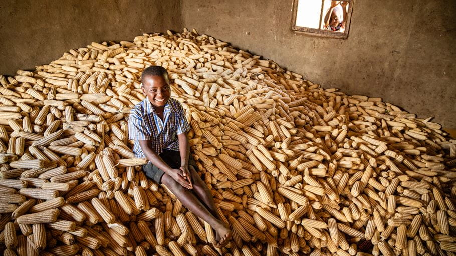 Boy sitting on a pile of maize